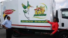 Eat Jamaican