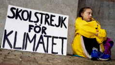 CC I'm with Greta Thunberg FB