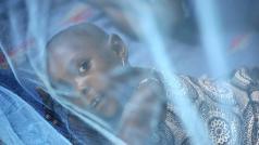 President's Malaria Initiative (cc: 0)