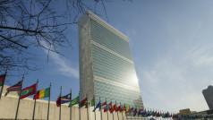 CC UN Photo / Rick Bajornas (CC BY-NC-ND 2.0)