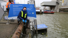 © River Cleanup