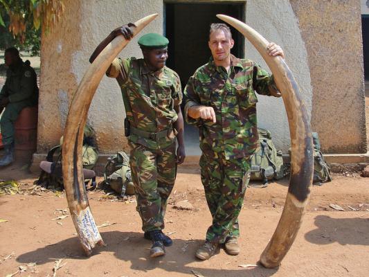 dnatest spoort afkomst ivoor op mo