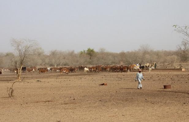 © CTB Mali
