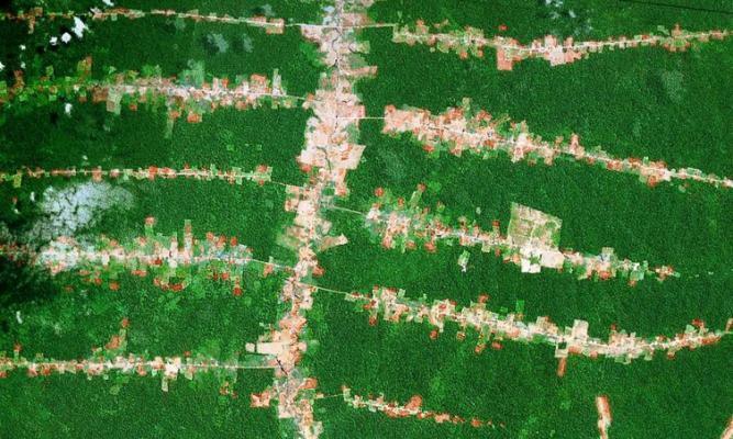 Ontbossing langsheen wegen – Amazonewoud in Brazilië (Google Earth)