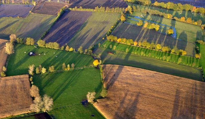 Landbouwgrond for Landbouwgrond te koop