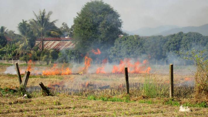 © Fire Reports Chiang Mai