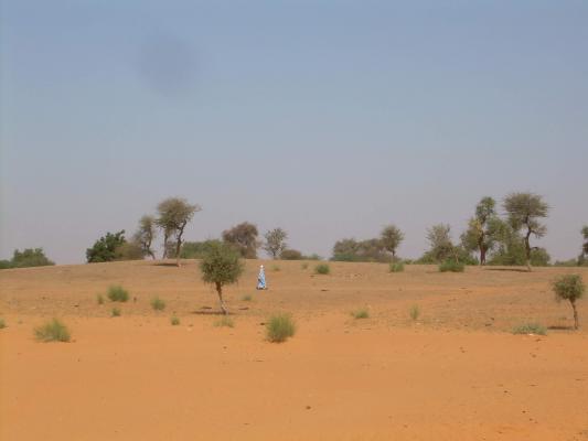 De Sahel in het noorden van Burkina Faso, de prachtige regio die nu het toneel is voor zoveel geweld.