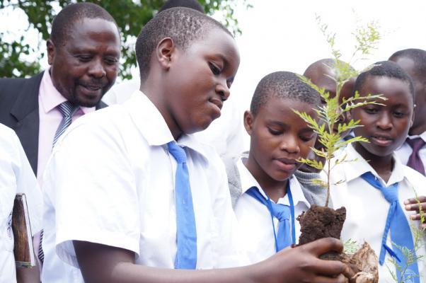 Bomen planten in West Oeganda