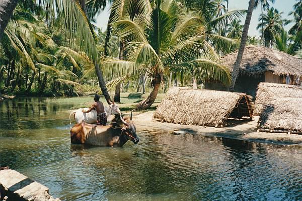 Kerala Binnenwateren