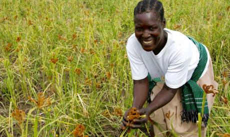 DFID - UK Department for International Development CC BY 2.0
