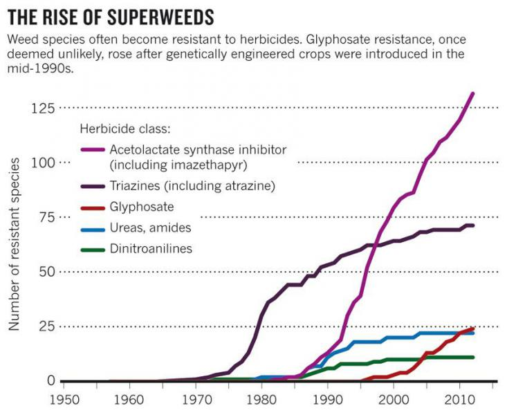 Source: Ian Heap, International Survey of Herbicide Resistant Weeds www.weedscience.org/graphs/soagraph.aspx (2013).